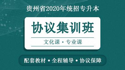 贵州统招专升本协议集训班